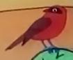 Batw 048 bird