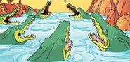 Crocodile PBS