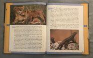 Scholastic Encyclopedia Of Animals (29)