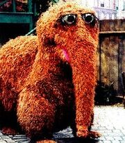 Snuffy in Sesame Street