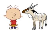 Stanley Griff meets Common Eland