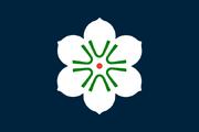 Dalibor Flag