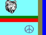 Firstflagofjelbania