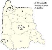 Ruzian VS Counties Cities