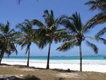 Diani Beach 03