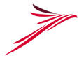 Air Navigation Co Logo