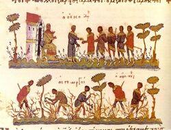 Kalopian agriculture