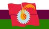 Mikuni Hulstria flag