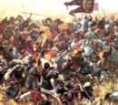 Battle of Tnaka