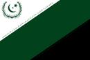 MedinaFlag