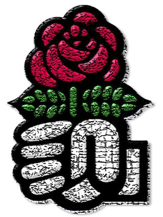 Image parti socialiste rose logo brokeng particracy wiki fileparti socialiste rose logo brokeng thecheapjerseys Gallery