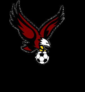 TFSL logo