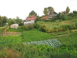 Trigunian Farm
