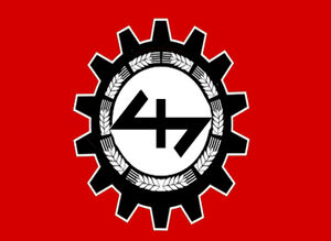 NSHAP Banner