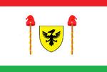 Flagofthedirectorate