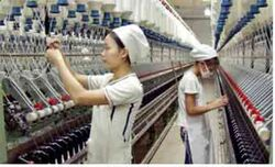 Sekowo-textile-industry
