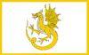 New Port Rhynach Flag