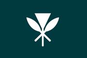 Flag of Tropica