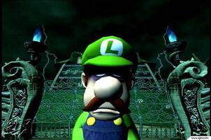 Luigis14