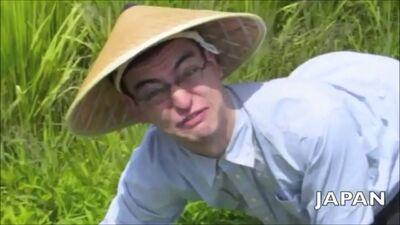 Ricefields