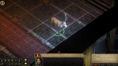 Animal Companions | Pathfinder Kingmaker Wiki | FANDOM