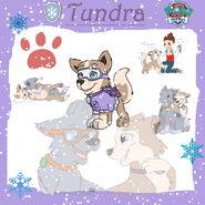Tundra copy