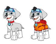 Racer Pup