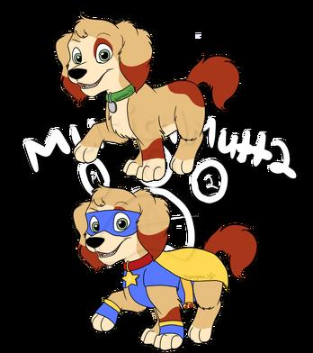 Maui the stunt pup
