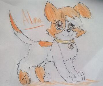 AlmaNew