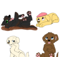 Pup Pup Puppies 3