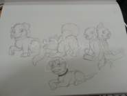 ShadowXAurora puppies
