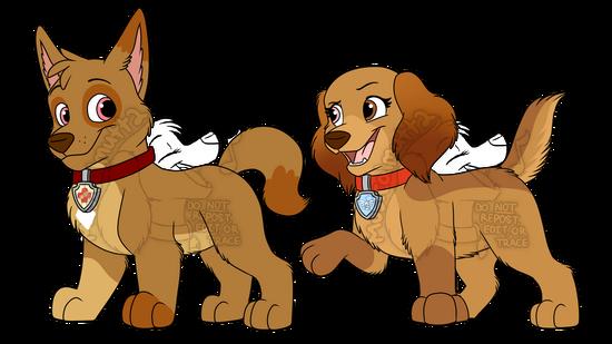 CxS pups