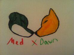 Med X Dawn