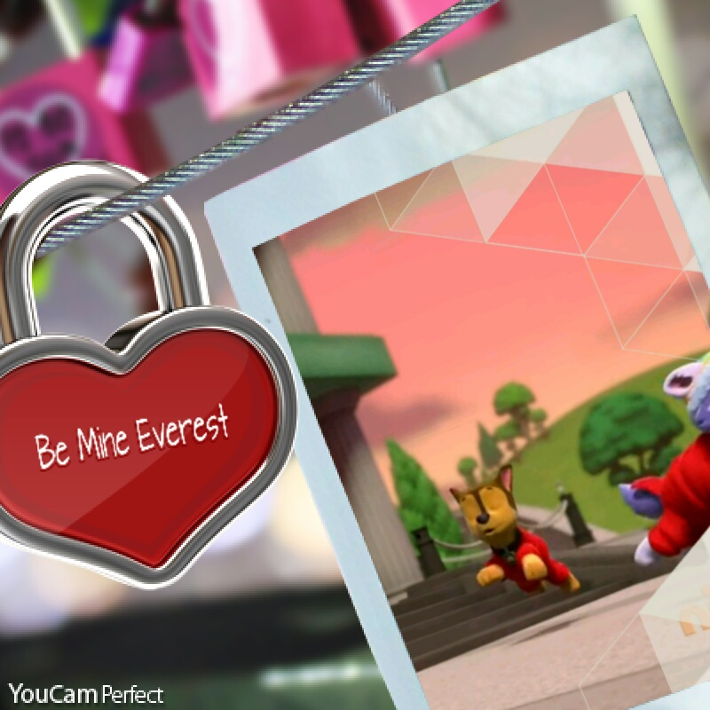 Chase x Everest frist sight | Paw Patrol love stories Wikia