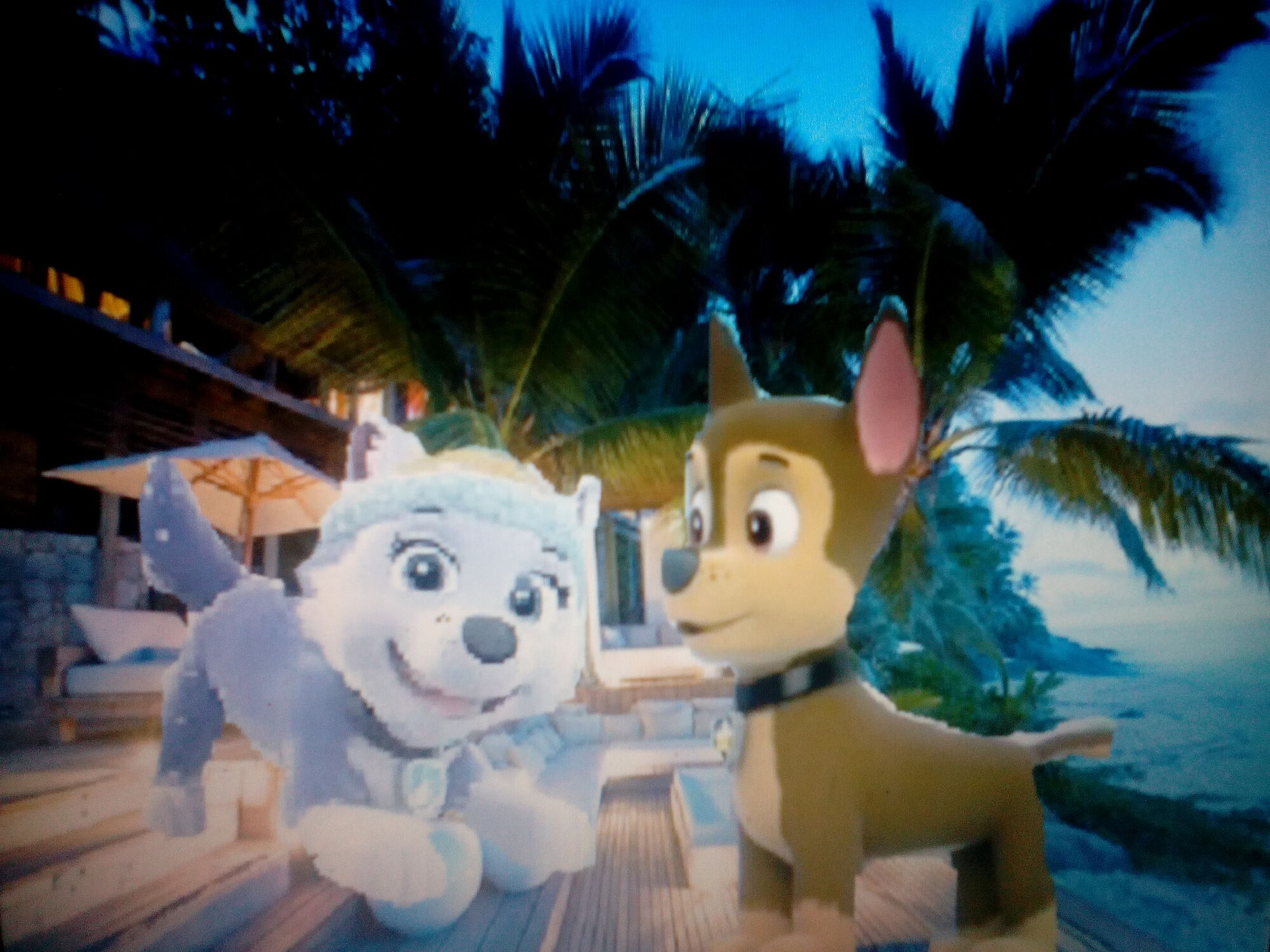 Chase x Everest   I love you love story   | Paw Patrol love