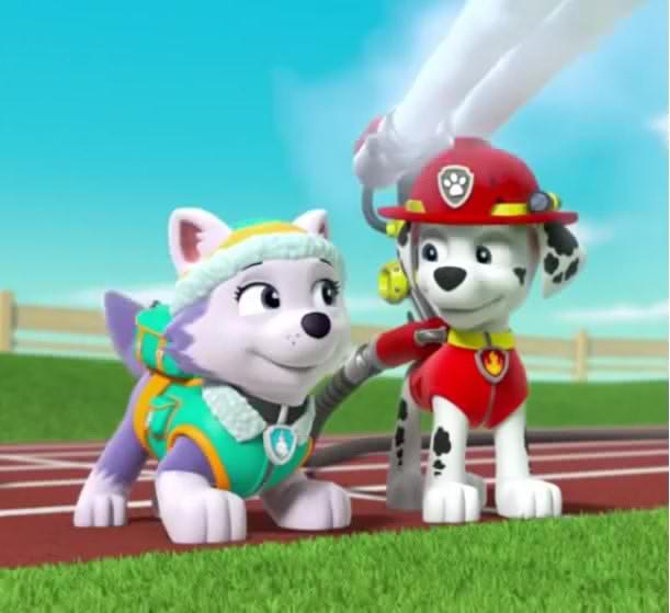Marshall X Everest | Paw Patrol Relation Ship Wiki | FANDOM