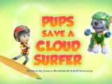 Pups Save a Cloud-Surfer