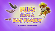 Pups Save a Bat Family (HQ)