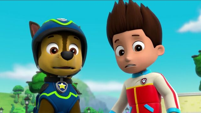 File:PAW Patrol Pups Save the Songbirds Scene 28.jpg