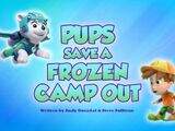 Pups Save a Frozen Camp Out
