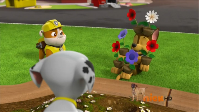File:Chase and the flowers.png