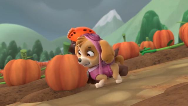 File:Push dat Pumpkin.png