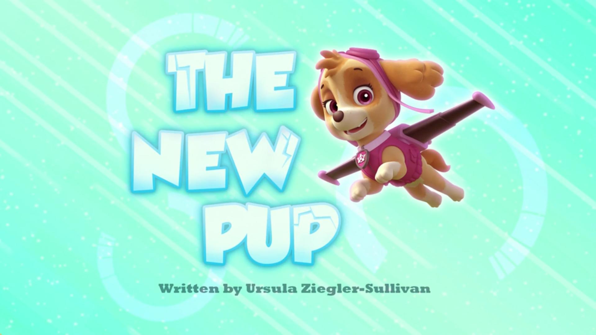 The New Pup Paw Patrol Wiki Fandom Powered By Wikia