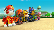 PAW Patrol Air Pups Marshall Rubble Chase Rocky Zuma Skye 2