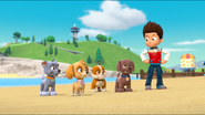 PAW Patrol Air Pups Ryder Rubble Rocky Zuma Skye 2
