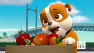 PAW Patrol Pups Save the Critters Rubble 1