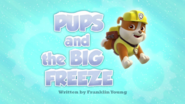Pups and the Big Freeze HD