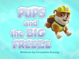 Pups and the Big Freeze