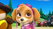PAW.Patrol.S01E26.Pups.and.the.Pirate.Treasure.720p.WEBRip.x264.AAC 766032