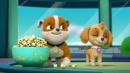 Paw.Patrol.S03E26E27.Parroting.Pups.Merpups.Save.the.Turbots.720p.WEB-DL.AAC2.0.H264-BTN 706539